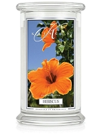 Kringle Candle Hibiscus