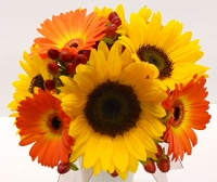 Sunflower & Mini Gerbera Daisy Bouquet