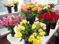 Cash & Carry Dozen Roses
