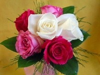 Half Dozen Rose Hand-Tied Bouquet